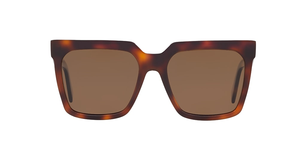 Tortoise CL000173 Brown  55