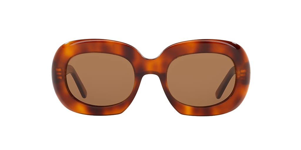 Tortoise CL000183 Brown  51
