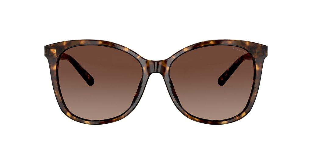 Tortoise HC8271U Brown  57
