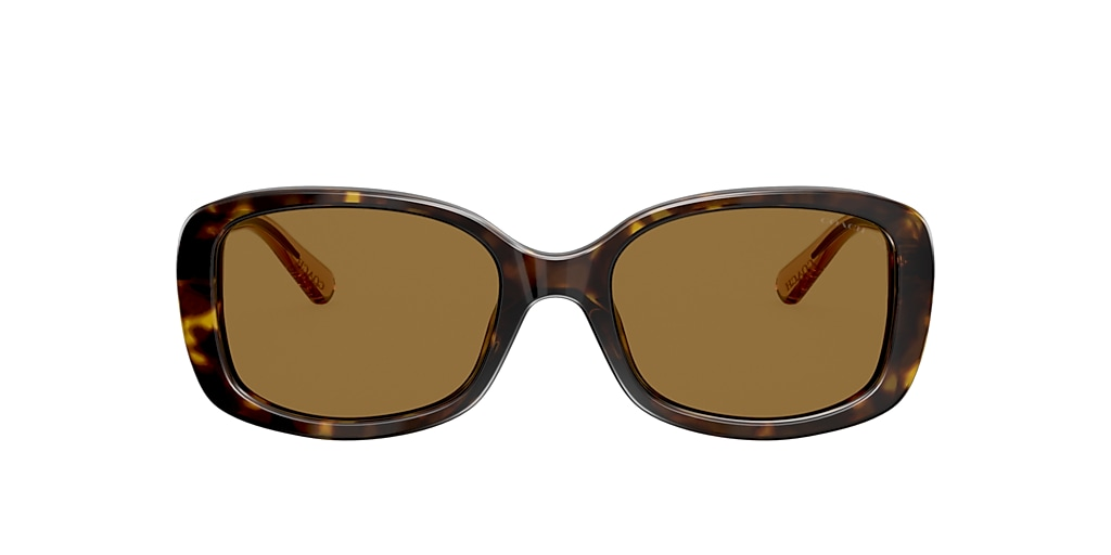 Tortoise HC8278 Brown