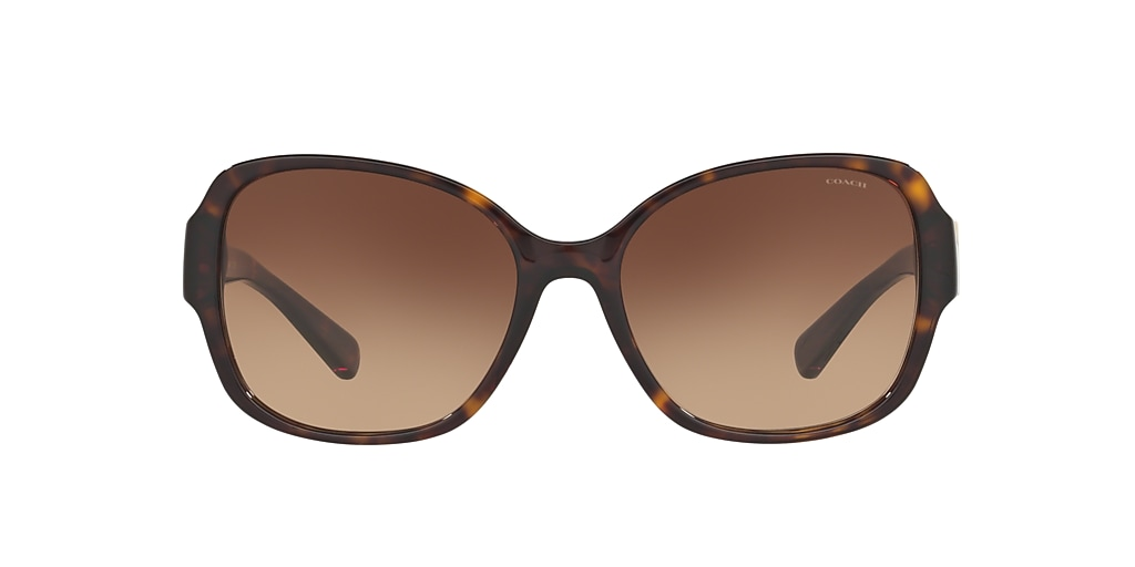 Tortoise HC8166 Brown Gradient  58