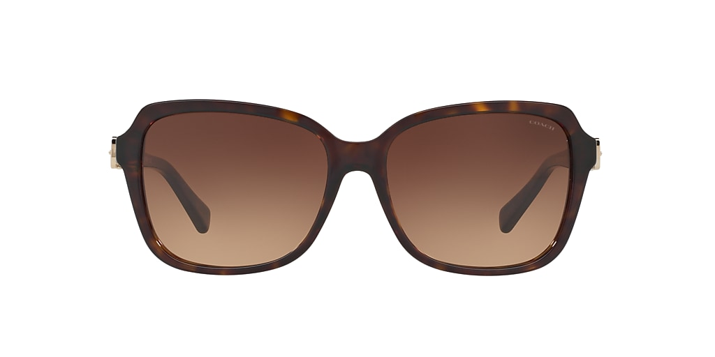 Tortoise HC8179 Brown  58