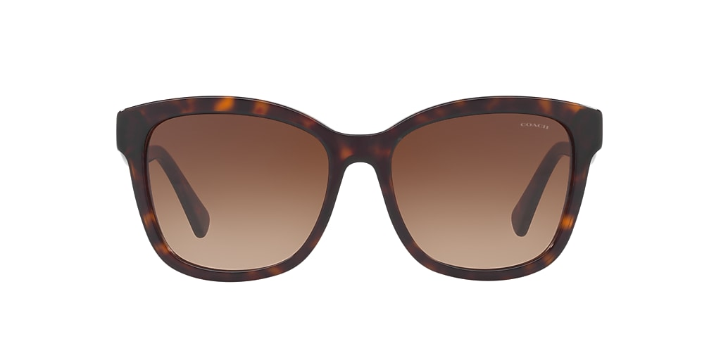 Tortoise HC8219 Brown  56