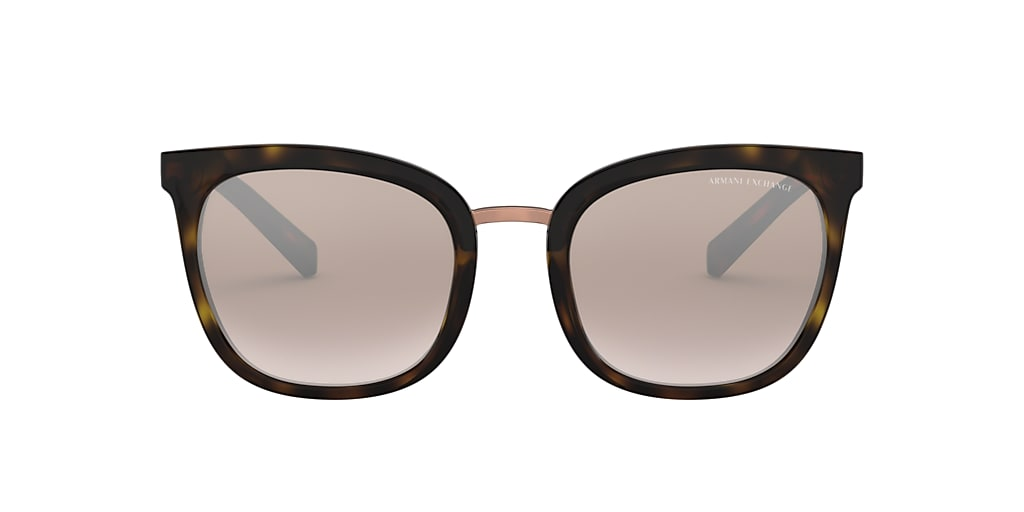 Tortoise AX4089S Brown Gradient