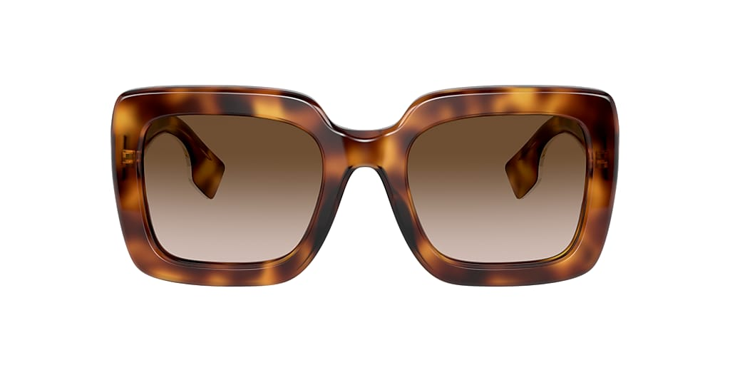 Tortoise BE4284 Brown  52