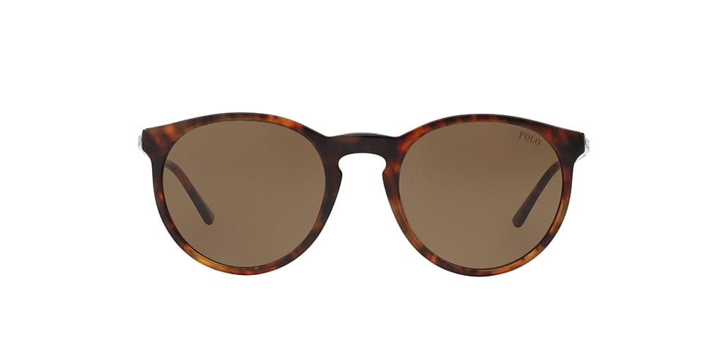 Tortoise PH4096 Dark Brown Classic  50