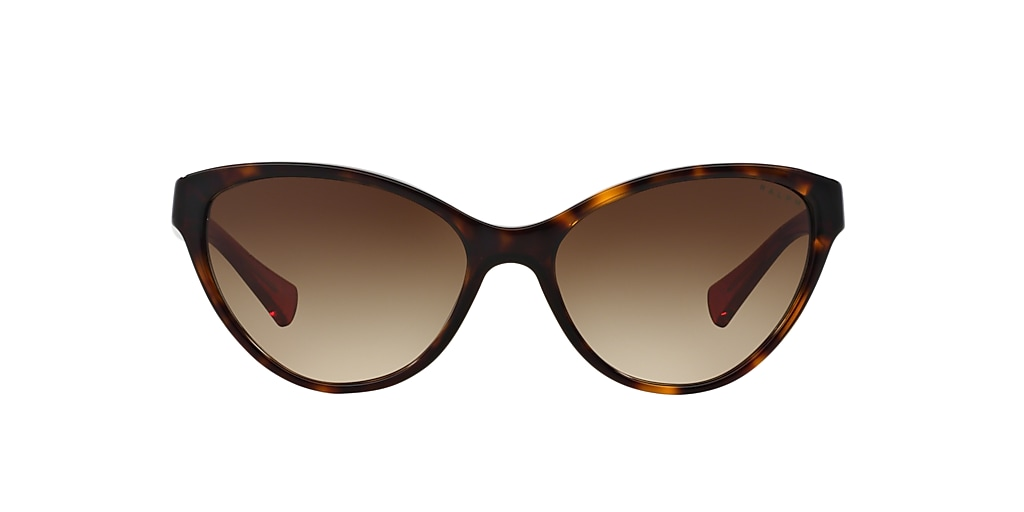 Tortoise RA5195 Brown Gradient