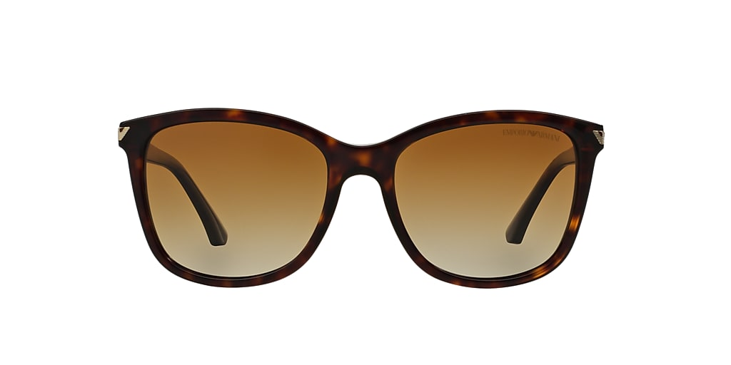 Tortoise EA4060 Brown  56