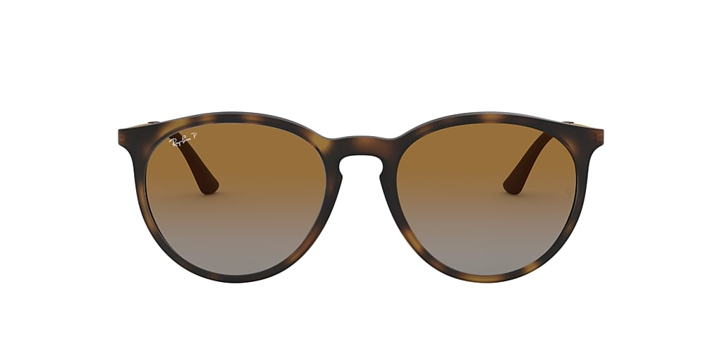 Tortoise RB4274 Polarized Brown Gradient  53