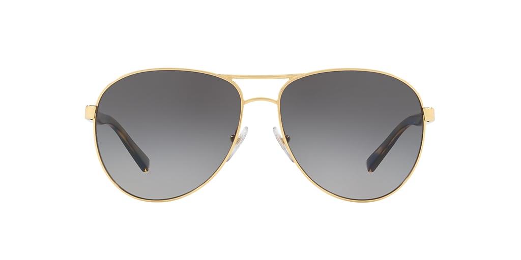 Gold HU1005 Polarized Grey Gradient  60