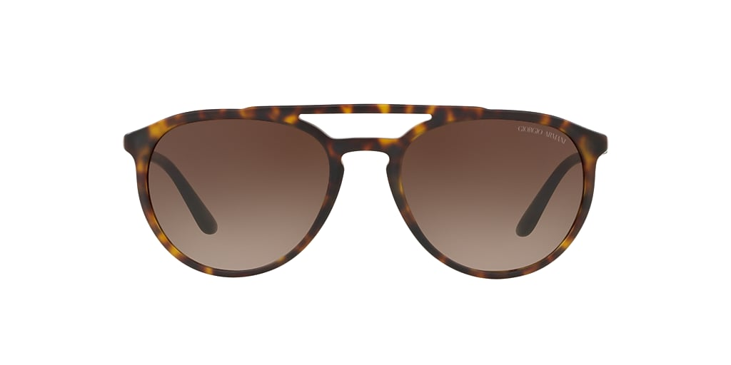 Tortoise AR8105 Brown Gradient
