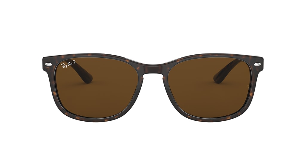 Tortoise RB2184 Polarized Brown Classic B-15  57