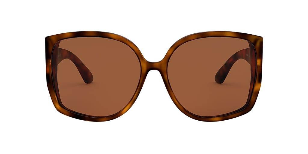 Tortoise BE4290 Brown  61