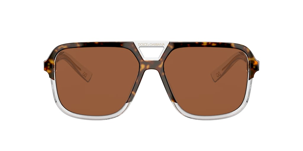 Tortoise DG4354 Brown  58