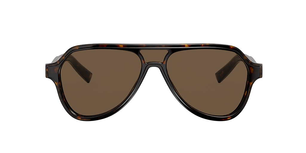 Tortoise DG4355 Brown  56