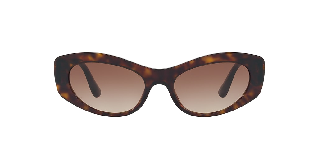 Tortoise DG4360 Brown  53