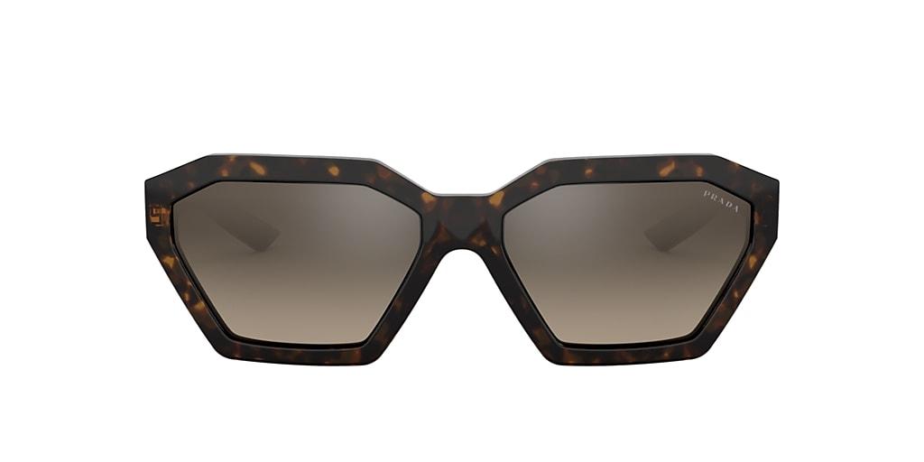Tortoise PR 03VS Brown  57