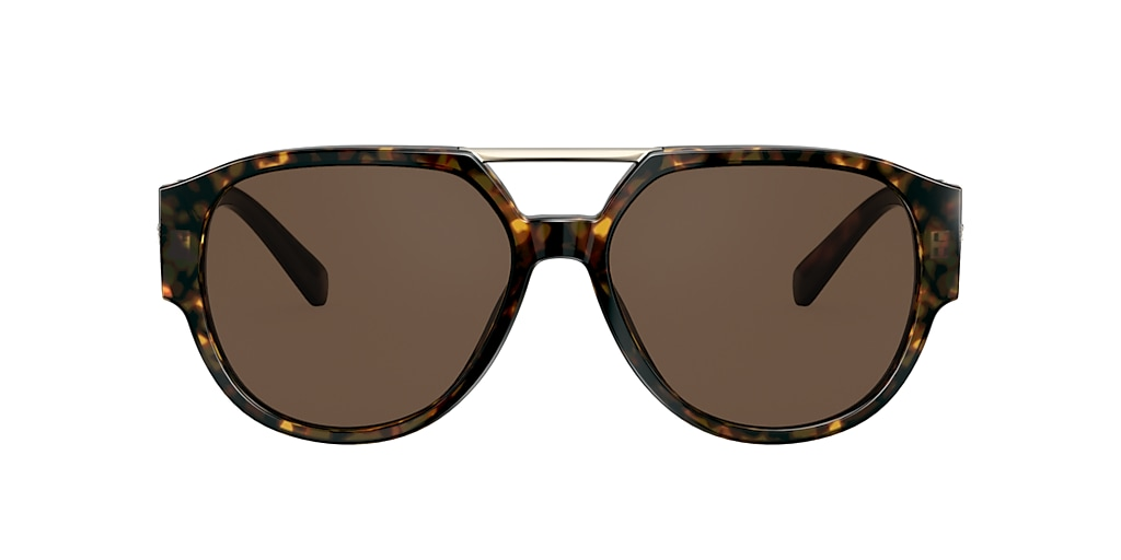 Tortoise VE4371 Brown  FA