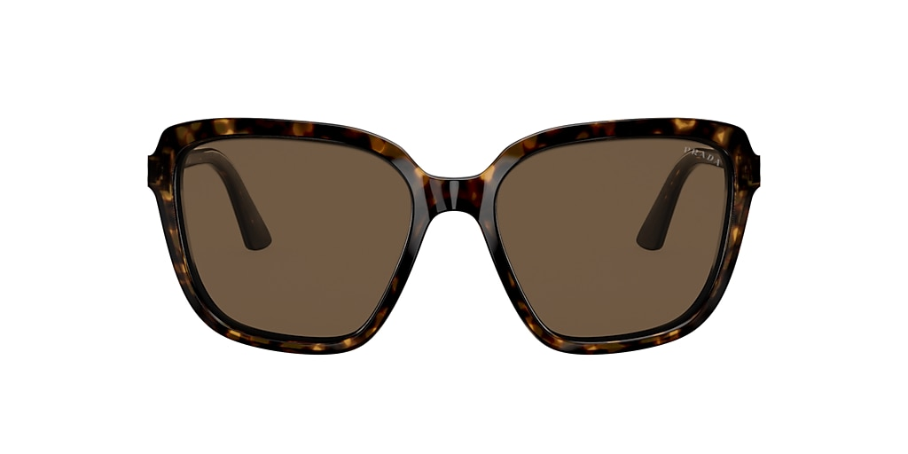 Tortoise PR 10VS Brown  58