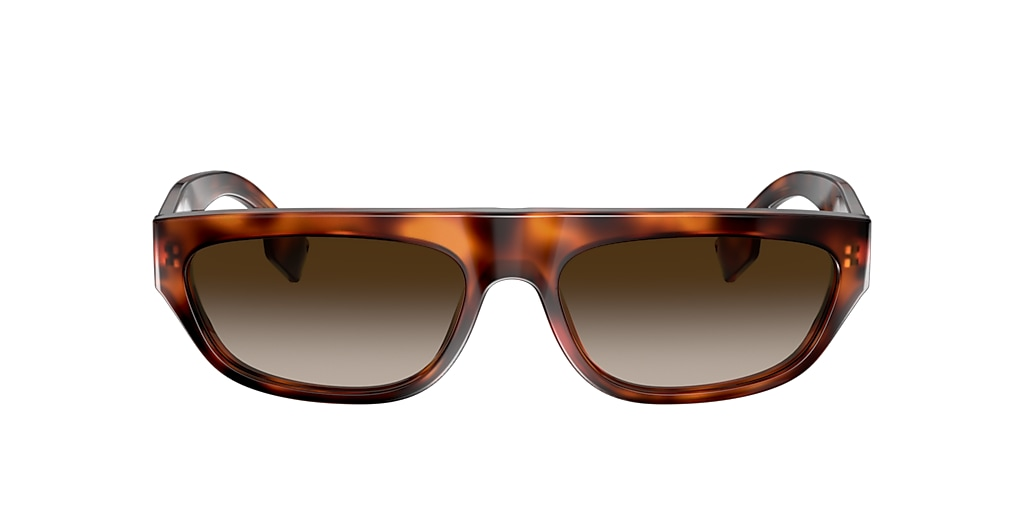 Tortoise BE4301 Brown Gradient