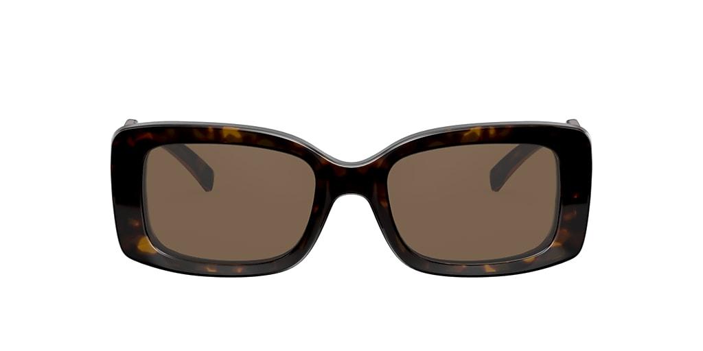 Tortoise VE4377 Brown
