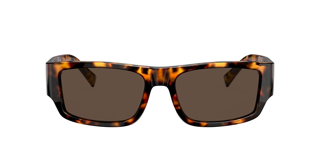 Tortoise VE4385 Brown Gradient