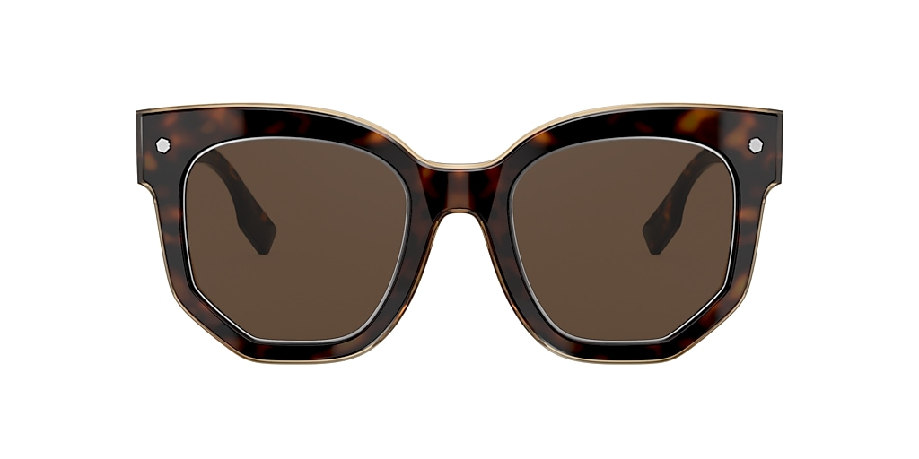 Tortoise BE4307 Brown Gradient