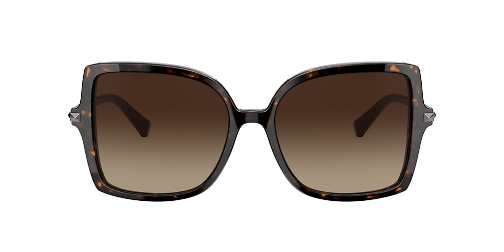 Tortoise VA4072 Brown